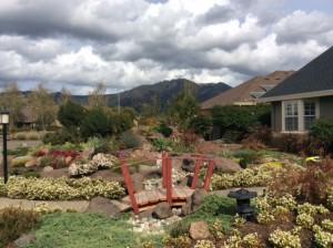 pretty yard