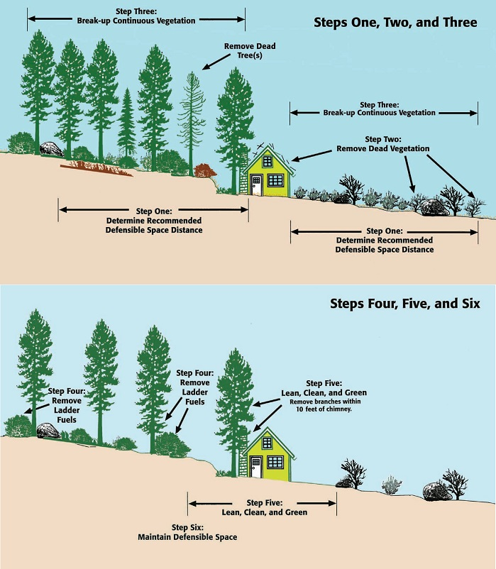 Steps 1 through 6 for defensible space.