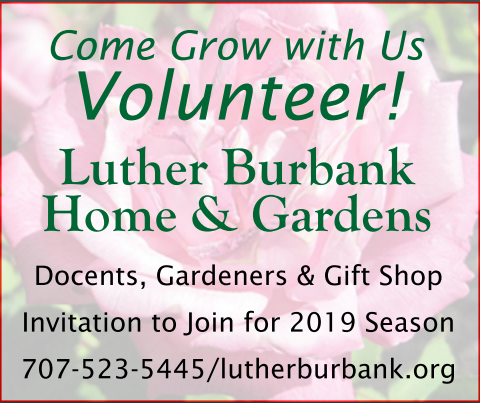 Volunteer at the Luther Burbank Home & Gardens Center, call 523 5445 for more info.