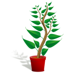 Plant Care Co-op