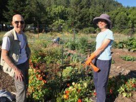 2019-8-15 Community Garden Shirley Elihu
