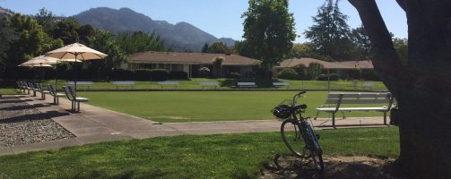 Lawn-Bowling-The-Green